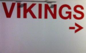 cartell vikings